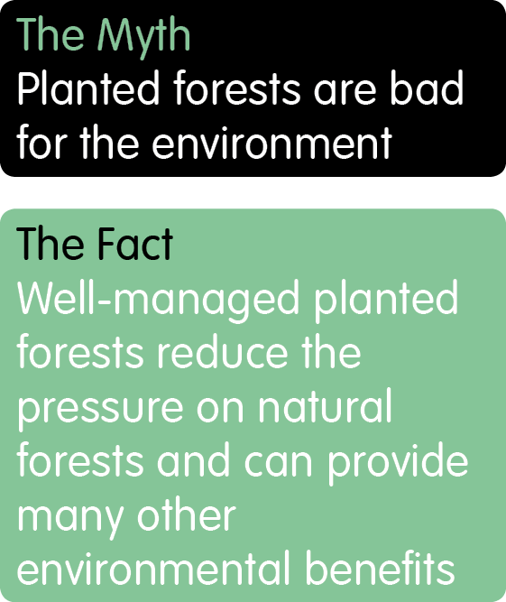 Planted Forests