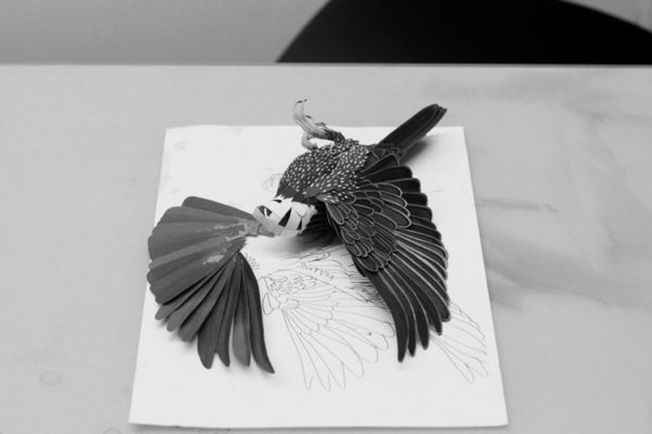 The amazing paper bird art of Diana Beltran Herrera