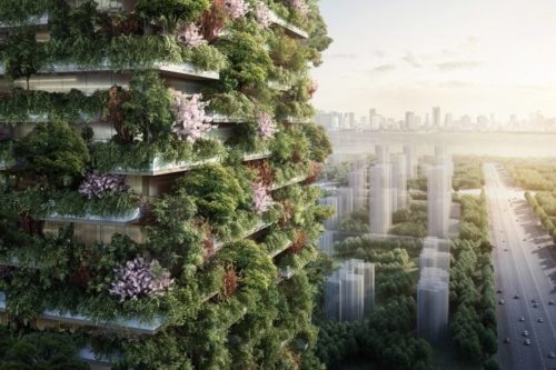 Forests and Sustainable Cities