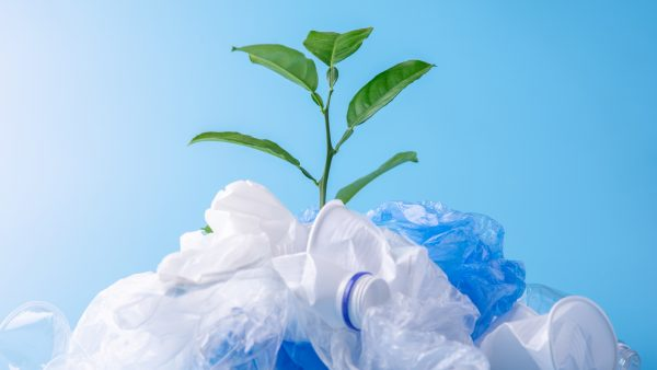 Are plants the new plastic?