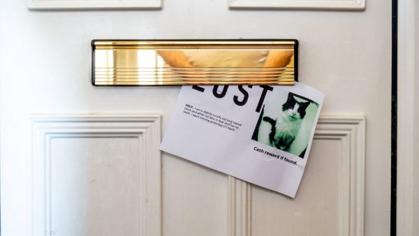 Direct mail provides opportunity for brands to cut through the noise