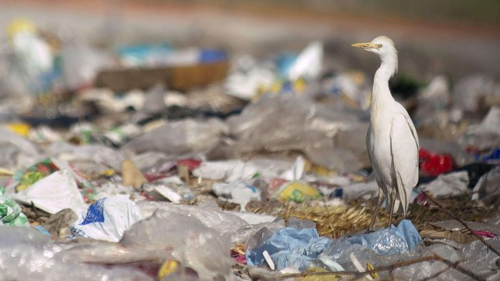 Plastic pollution to reach 1.3bn tonnes by 2040 | Sustainable Paper Packaging & Print | TwoSide