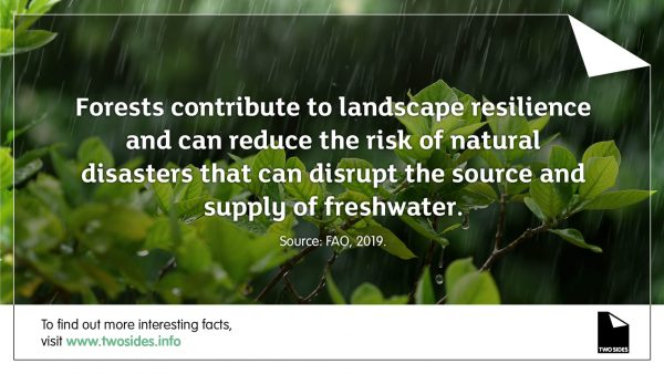 Paper Fact 16: Forests contribute to landscape resilience