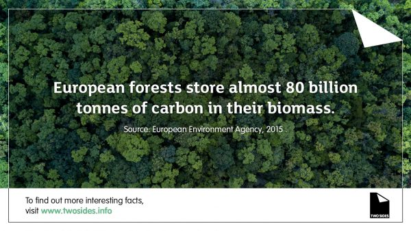 forests-store-carbon