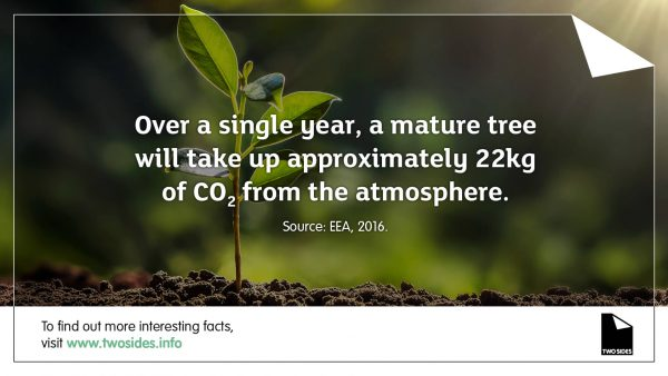 Paper Fact 20: A mature tree can take up 22kg of CO2 from the atmosphere