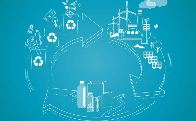 Certified Paper Packaging and The Circular Economy