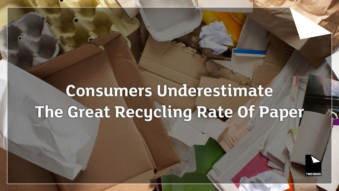 Consumers Underestimate The Great Recycling Rate Of Paper. Latest Study Reveals. | Sustainable Paper Packaging & Print | TwoSide