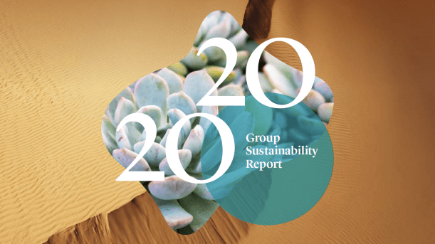 Sappi Group Sustainability Report 2020 | Sustainable Paper Packaging & Print | TwoSide